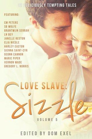 Sizzle anthology cover